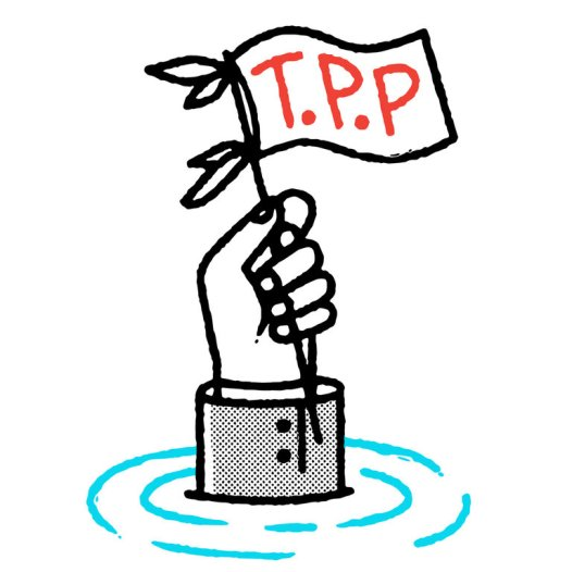 tpp-flag