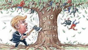 trump-and-wto