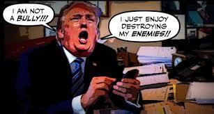 trump-cyberbullied